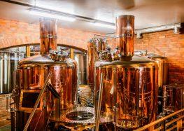Варить или не варить домашнее пиво?